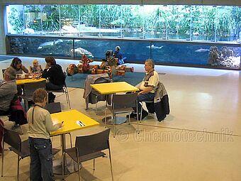 Meeresmuseum, Stralsund